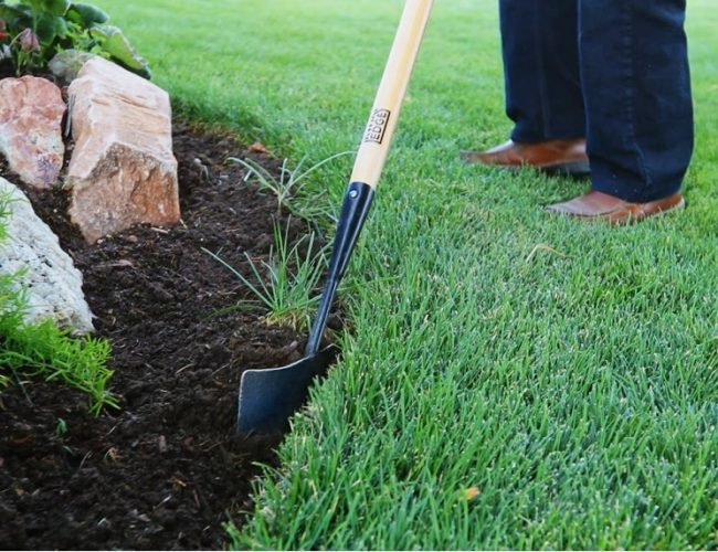 Greatest Lawn Edgers: Reviews & Buying Guide
