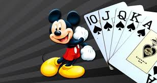 What are the things you can experience from the online casino gaming platform?